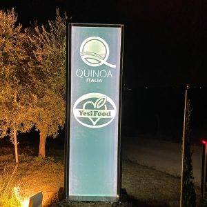 insegna luminosa Quinoa italia jesi food